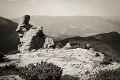 Ηλιόλουστη ημέρα Carpathians, ο έχων νώτα Stone Στοκ Εικόνες