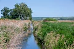Ηλιόλουστη θερινή ημέρα Ένας μικρός ποταμός μεταξύ των καλάμων Λόφοι στο υπόβαθρο birders στοκ εικόνα