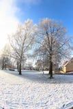 Ηλιόλουστη χειμερινή ημέρα Στοκ εικόνες με δικαίωμα ελεύθερης χρήσης