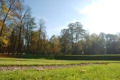 Ηλιόλουστη όμορφη ημέρα στο πάρκο Στοκ εικόνα με δικαίωμα ελεύθερης χρήσης