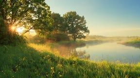 Ηλιόλουστο πρωί άνοιξη Στοκ εικόνες με δικαίωμα ελεύθερης χρήσης