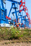ημέρας Καζακστάν αντλίες πετρελαίου μήνα Ιουνίου δυτικές Στοκ Εικόνες