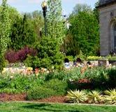 Ημέρα άνοιξη στους αμερικανικούς βοτανικούς κήπους Στοκ Εικόνα