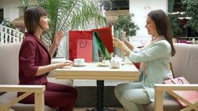 Ημέρα αγορών, οι εύθυμες γυναίκες πίνουν το τσάι στο εστιατόριο καυχώνται για τις αγορές στις εποχιακές πωλήσεις και τις εκπτώσει απόθεμα βίντεο