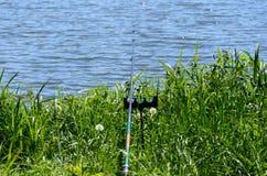 Ημέρα αλιείας στη δασική λίμνη στοκ εικόνα