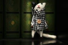 Ημέρα βιβλίων παιχνιδιών γατών μαλλιού Στοκ Εικόνα
