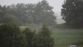 ημέρα βροχερή Ισχυρός άνεμος και βροχή δέντρα φυτών το μήλο καλύπτει το δέντρο ήλιων φύσης λιβαδιών τοπίων λουλουδιών κίνηση αργή απόθεμα βίντεο
