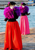 ημέρα καρναβαλιού Στοκ εικόνες με δικαίωμα ελεύθερης χρήσης