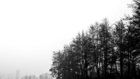 ημέρα ομιχλώδης Στοκ Εικόνες