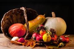 ημέρα των ευχαριστιών ζωής &a στοκ εικόνες με δικαίωμα ελεύθερης χρήσης