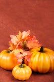 ημέρα των ευχαριστιών πτώσης διακοσμήσεων στοκ εικόνες