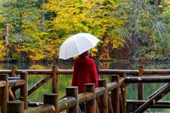 ημέρα φθινοπώρου βροχερή Στοκ φωτογραφίες με δικαίωμα ελεύθερης χρήσης