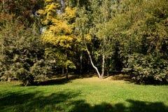 ημέρα φθινοπώρου ηλιόλουστη Στοκ Εικόνα