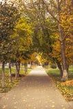 Ημέρα φθινοπώρου Στοκ Φωτογραφίες