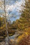 Ημέρα φθινοπώρου Στοκ εικόνα με δικαίωμα ελεύθερης χρήσης
