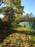 Ημέρα φθινοπώρου Στοκ φωτογραφίες με δικαίωμα ελεύθερης χρήσης