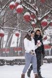 Ημέρα χιονιού στο Τορόντο Στοκ φωτογραφία με δικαίωμα ελεύθερης χρήσης