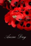 Ημέρα Anzac Στοκ φωτογραφίες με δικαίωμα ελεύθερης χρήσης