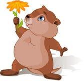 ημέρα groundhog Στοκ Εικόνες