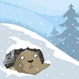 Ημέρα Groundhog Στοκ φωτογραφία με δικαίωμα ελεύθερης χρήσης