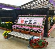Ημέρα shichi-πηγαίνω-SAN εορτασμοί επτά-πέντε-τριών ημερών στη λάρνακα Dazaifu Tenmangu στοκ εικόνες με δικαίωμα ελεύθερης χρήσης