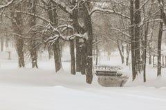 Ημέρα Wiinter στο πάρκο Στοκ Εικόνες