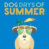 Ημέρες σκυλιών του καλοκαιριού διανυσματική απεικόνιση
