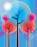 Ημίτοά δέντρα Στοκ εικόνες με δικαίωμα ελεύθερης χρήσης