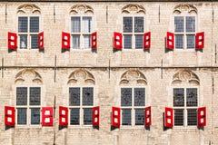 Δημαρχείο γκούντα, Ολλανδία Στοκ φωτογραφίες με δικαίωμα ελεύθερης χρήσης