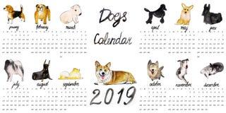 Ημερολόγιο 2019 σκυλιών διανυσματική απεικόνιση
