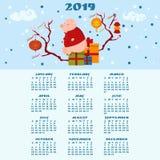 ημερολόγιο του 2019 Χαριτωμένη συνεδρίαση χοίρων στο κιβώτιο με τα δώρα στοκ εικόνες με δικαίωμα ελεύθερης χρήσης