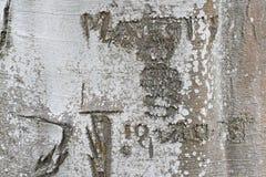 Ημερομηνία & αρχικά που χαράζονται σε έναν κορμό δέντρων στοκ εικόνες με δικαίωμα ελεύθερης χρήσης