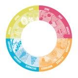 Ημερολόγιο κύκλων με τις εικόνες Στοκ Εικόνες