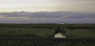 δημιουργημένο πλίθα λογισμικό τοπίου φύσης εικονογράφων Στοκ Φωτογραφία
