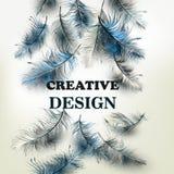 Δημιουργικό διανυσματικό υπόβαθρο με τα μπλε φτερά και το crea υπογραφών Στοκ εικόνα με δικαίωμα ελεύθερης χρήσης