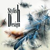 Δημιουργικό διανυσματικό υπόβαθρο με τα μπλε φτερά και το styl υπογραφών Στοκ εικόνα με δικαίωμα ελεύθερης χρήσης