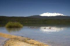 ημισεληνοειδής λίμνη στοκ φωτογραφία με δικαίωμα ελεύθερης χρήσης