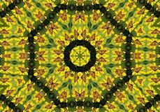 ημισεληνοειδές kaleidoscopic μαργ&alp Στοκ εικόνες με δικαίωμα ελεύθερης χρήσης