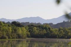 ηξών Περιφερειακό πάρκο Riverfront, χώρα κρασιού Sonoma, Καλιφόρνια στοκ εικόνες