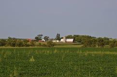 Ηρεμία πρωινού πέρα από farmstead στοκ εικόνα με δικαίωμα ελεύθερης χρήσης