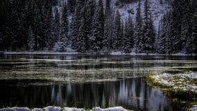 Ηρεμία Silver Lake και γαλήνιος Στοκ εικόνες με δικαίωμα ελεύθερης χρήσης
