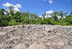 Ηφαίστειο λάσπης Lipad, Sabah Μπόρνεο Στοκ εικόνα με δικαίωμα ελεύθερης χρήσης