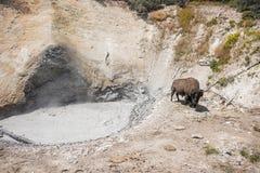 Ηφαίστειο βισώνων και λάσπης Στοκ Εικόνα
