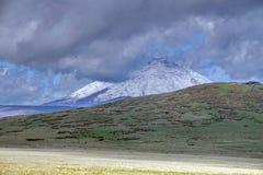 Ηφαίστειο Antisana επάνω από το λιβάδι paramo Στοκ Φωτογραφία