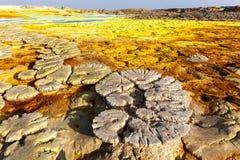 Ηφαίστειο Dallol στοκ εικόνες με δικαίωμα ελεύθερης χρήσης