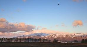 Ηφαίστειο Eyjafjallajökull που βλέπει από το κοντινότερο αγρόκτημα Στοκ Φωτογραφία