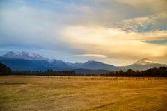 Ηφαίστειο Iztaccihuatl και popocatepetl Στοκ φωτογραφίες με δικαίωμα ελεύθερης χρήσης
