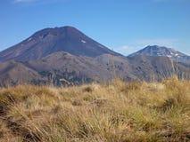 Ηφαίστειο lonquimay στο πάρκο araucarias las στη Χιλή Στοκ εικόνες με δικαίωμα ελεύθερης χρήσης