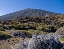 ηφαίστειο teide στοκ εικόνες