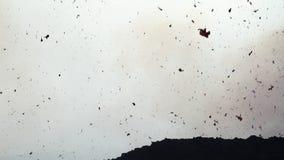 ηφαιστειακή βόμβα λεπτομέρειας φιλμ μικρού μήκους